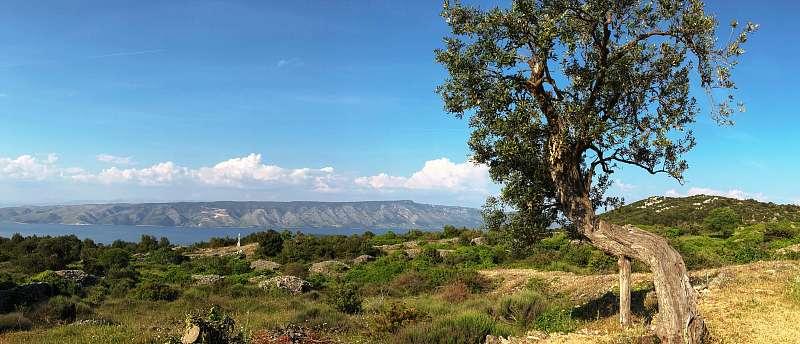 Trasa Střední Dalmácie